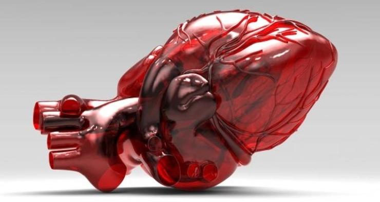 правило, почему в присутствии врача сильно бьется сердце обычное