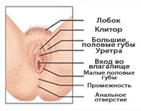 zhzhenie-vo-vlagalishe-vo-vremya-podmivaniya